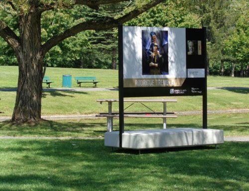 Des artistes professionnels de Longueuil à découvrir au parc Michel Chartrand